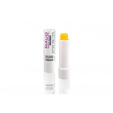 Soins maquillage permanent -  - STICK CICATRISANT DERMOPIGMENTATION LIVRES AFTER INK LIPS VEGAN (4 g)